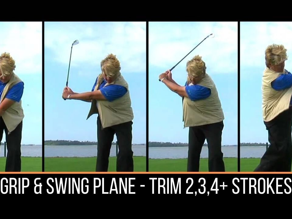 Grip and Swing Plane, improve your golf game at indoor golf facility in Westland Michigan